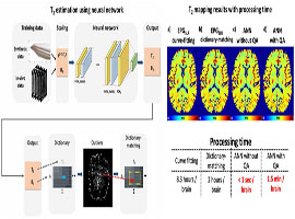 iMRI :: Investigative Magnetic Resonance Imaging